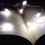 avatar Les lectures de Pippin