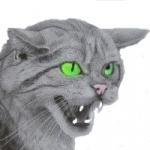 avatar Chapent
