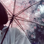 avatar A-Little-Bit-Dramatic