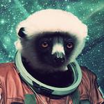 avatar Yogo