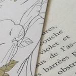 avatar mon_ami_le_livre