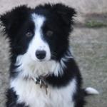 avatar EmmaP
