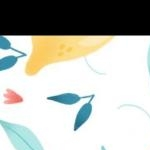 avatar lectures_du_soir