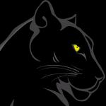 avatar Sunnypsi