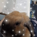 avatar Celia DeMotsEnPages