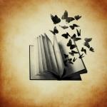 avatar Elooodiie_butterfly