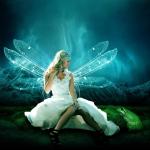 avatar la bouquinerie des fées