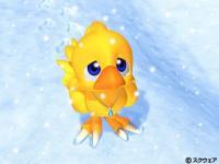 avatar Choco