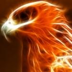 avatar Phoenix_89