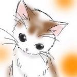 avatar Jeunelectriceaddict