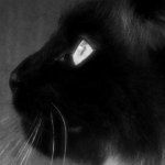 avatar Faust57140