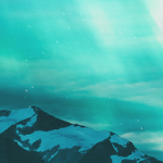 avatar ThePhoenixWarrior