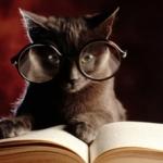 avatar Celinette82