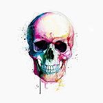 avatar Scribe06
