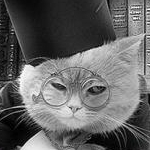avatar Des Livres Et Moi