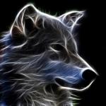 avatar Ena