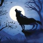 avatar Riku Wolf