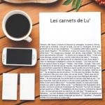 avatar Les carnets de Lu