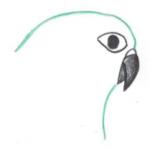 avatar NokomisM