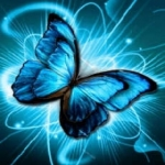 avatar ladymariposa