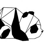 avatar Panda reveur