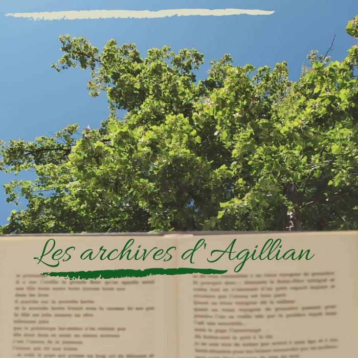 avatar Les archives d Agillian