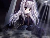 avatar dobbybo9