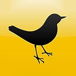 avatar Nymou