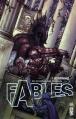 Couverture Fables (cartonné), tome 07 : Les royaumes Editions Urban Comics (Vertigo Classiques) 2013