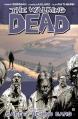 Couverture Walking dead, tome 03 : Sains et saufs ? Editions Image Comics (Horror) 2007