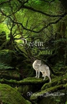 Couverture Destin, tome 1 : Identité