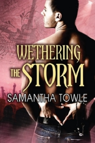 Couverture The Storm, book 2: Wethering the Storm