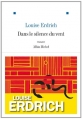 Couverture Dans le silence du vent Editions Albin Michel (Terres d'Amérique) 2013