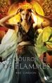 Couverture La fille de braises et de ronces, tome 2 : La couronne de flammes Editions Robert Laffont (R) 2013
