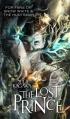 Couverture L'appel des oubliés : Les nouveaux royaumes invisibles, tome 1 : L'héritier oublié Editions Mira Books 2012
