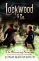 Couverture Lockwood & co., tome 1 : L'escalier hurleur / Agence Lockwood & Co : Chasseurs de fantômes, tome 1 : Le manoir de Côme Carey Editions Hyperion Books 2013