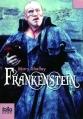 Couverture Frankenstein ou le Prométhée moderne / Frankenstein Editions Folio  (Junior) 2010