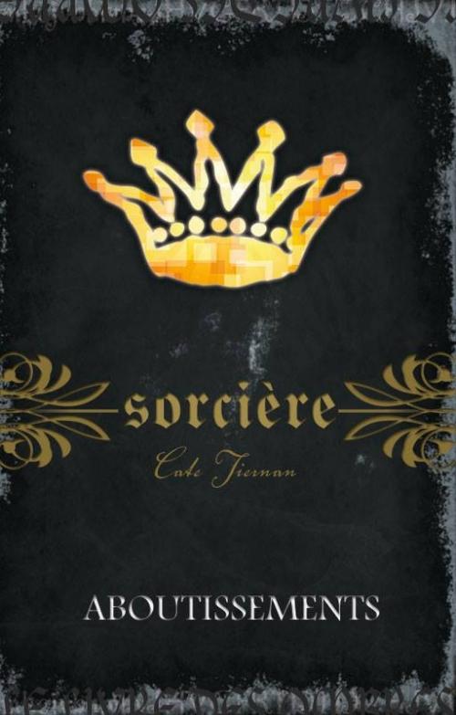 Couverture Magie blanche / Sorcière, tome 14 : Aboutissements
