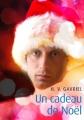 Couverture Un cadeau de Noël Editions Textes Gais 2013