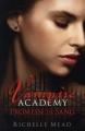 Couverture Vampire Academy, tome 4 : Promesse de sang Editions Razorbill 2011