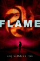 Couverture Mission nouvelle terre, tome 3 : Flame Editions St. Martin's Griffin/St. Martin's Press 2014