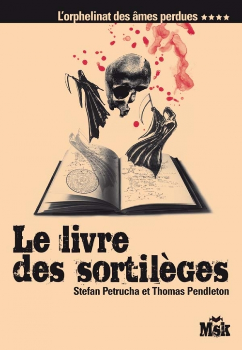 Couverture L'orphelinat des âmes perdues , tome 4 : Le livre des sortilèges