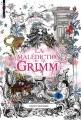 Couverture La malédiction Grimm Editions Bayard (Jeunesse) 2013