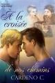 Couverture Home, tome 3 : À la croisée de nos chemins / Où il finit … je commence Editions Dreamspinner Press 2012