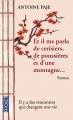 Couverture Et il me parla de cerisiers, de poussières et d'une montagne... Editions Pocket 2014
