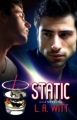 Couverture Static Editions Amber Quill Press, LLC  2011
