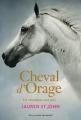 Couverture Cheval d'orage, tome 1 : Un champion sans prix Editions Gallimard  (Jeunesse) 2014