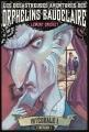 Couverture Les désastreuses aventures des orphelins Baudelaire, intégrale, tome 1 Editions Nathan 2014