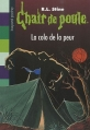 Couverture Le camp de la peur / La colo de la peur Editions Bayard (Poche) 2010