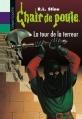 Couverture La tour de la terreur / Les pierres magiques Editions Bayard (Poche) 2013